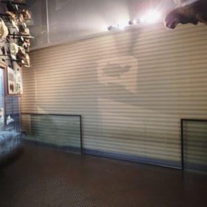 茨城県自然博物館 防火シャッター危害防止装置設置工事